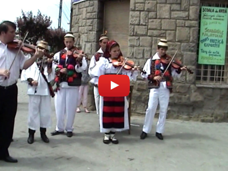 Scoala Populara de arte Sighetul Marmatiei 2008